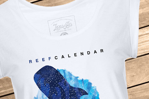 ReefCalendar_Women_Beach01_WoodBG