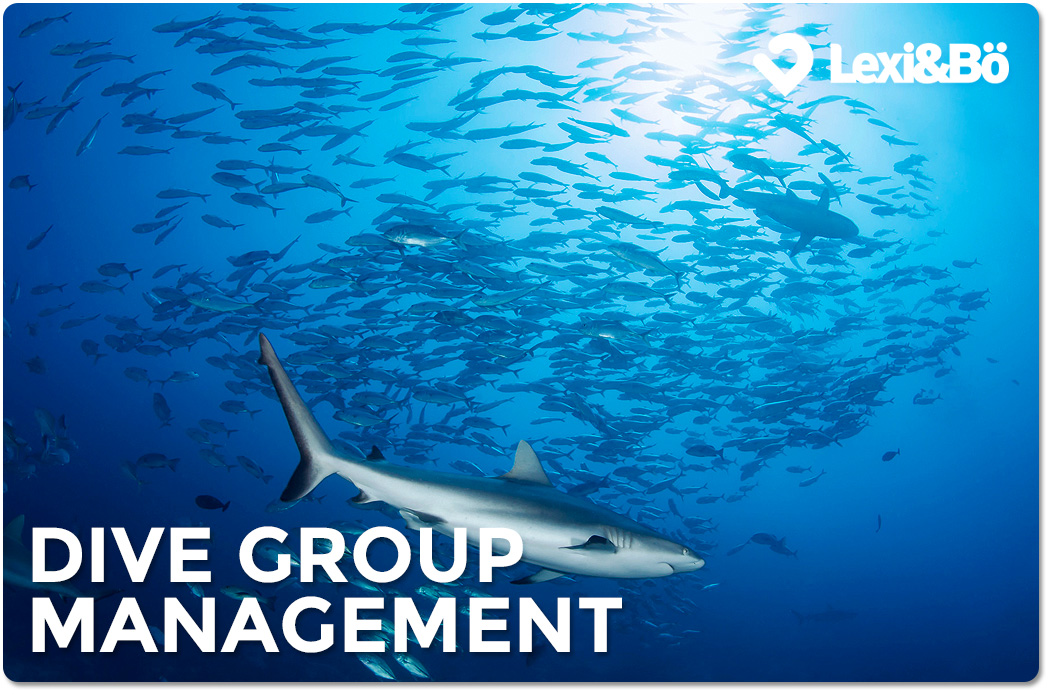 Gruppenführung – Dive Group Management