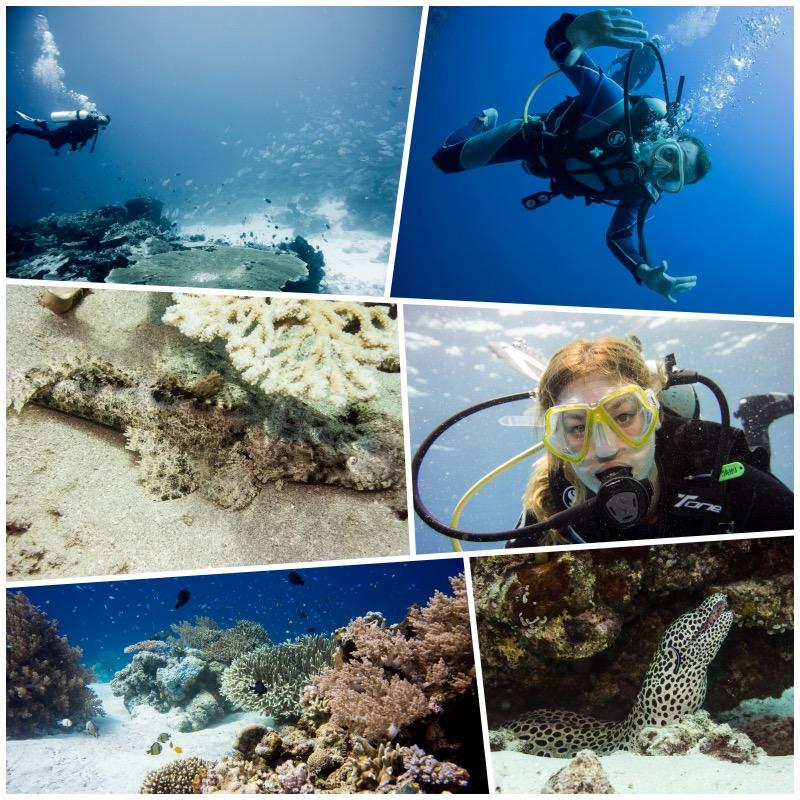 saparua-underwater