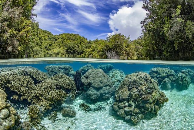 Palau über und unter Wasser