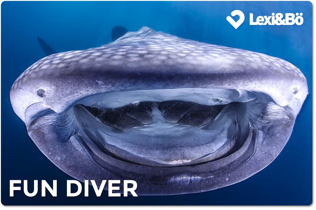 Fun Diver